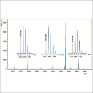Liquid Chromatography - Mass Spectrometry (LC-MS)