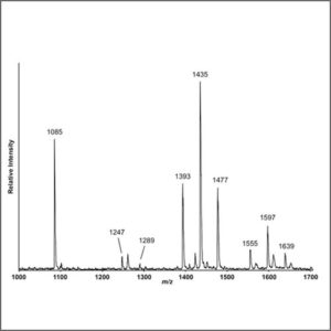 Mass Spectrometry (MALDI-TOF-MS)