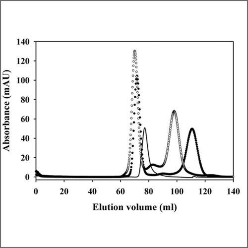 size-exclusion-chromatography1